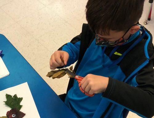 NAES Kindergarten Students Go on a Leaf Hunt