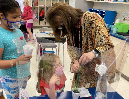 1st Grade Students Enjoy Plant Science Experiments