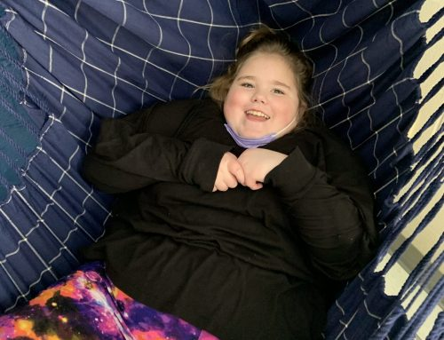 Endowment Funds Sensory Swing at NAES