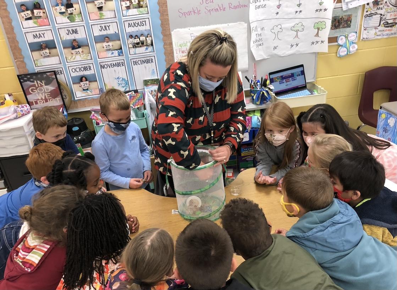 Kindergarten students enjoy butterfly project