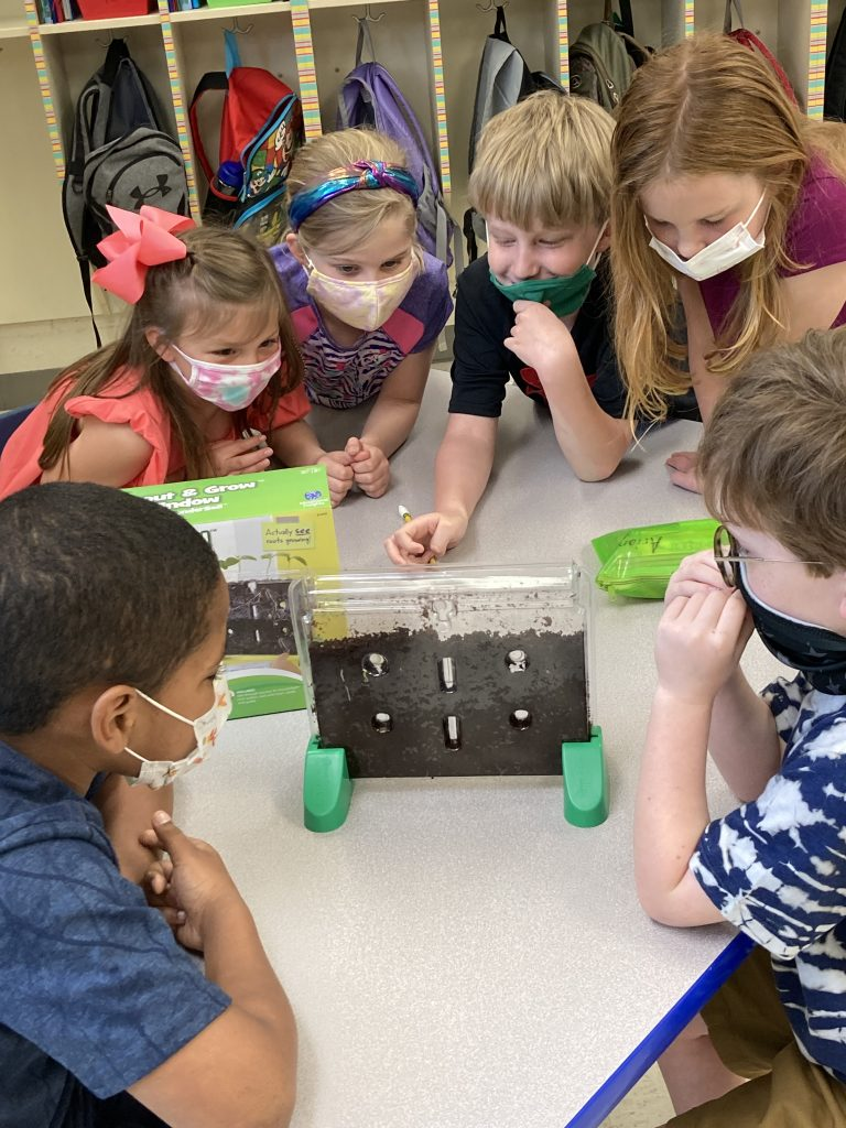 A group of first grade students have fun with a plant science project.